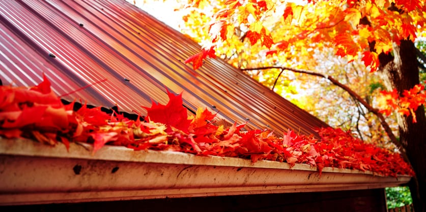 4 Reasons to Tackle Roofing Repairs in the Fall